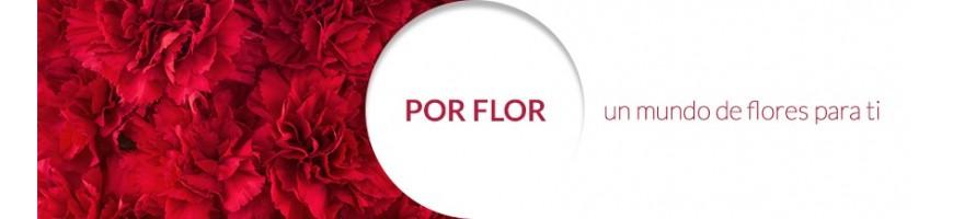 Por Flor