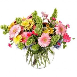 Bouquet Gerberas