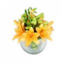 Bouquet de Lilis