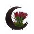 D Moon